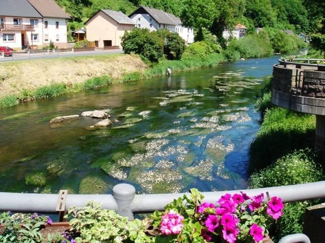 foto_brug_zomer_2009_groot